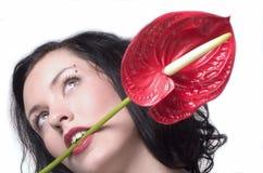Flor forte da preensão Foto de Stock