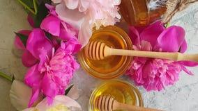 Flor fresca de la peon?a de la miel en la c?mara lenta del fondo concreto gris almacen de video