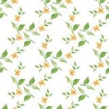 Flor Fundo sem emenda Teste padrão floral da aquarela Foto de Stock