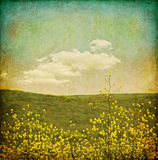 Flor Grunge de la vendimia Imagen de archivo