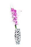 Flor hermosa del gladiolo en un florero Imágenes de archivo libres de regalías