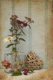 Flor hermosa en florero con todavía del corazón concepto del amor de la vida Imagenes de archivo