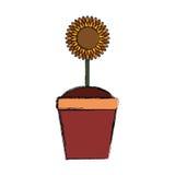 Flor hermosa en pote Imágenes de archivo libres de regalías
