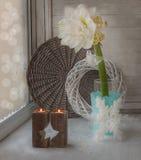 Flor Hippeastrum dobro branco na janela do inverno Imagem de Stock Royalty Free