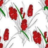 Flor incomun ilustração do vetor