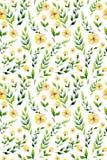 Flor inconsútil e hierbas del amarillo de la acuarela fijadas Imagenes de archivo