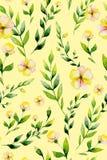 Flor inconsútil e hierbas del amarillo de la acuarela fijadas Foto de archivo