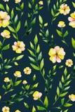 Flor inconsútil e hierbas del amarillo de la acuarela fijadas Imágenes de archivo libres de regalías
