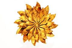 Flor inusual de madera Imagenes de archivo