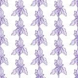 Flor Iris Pattern Blue ilustração do vetor