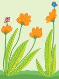 A flor islated compara o abstarct Imagens de Stock