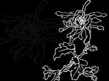 Flor japonesa Imagem de Stock
