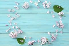 flor lilás cor-de-rosa no fundo de madeira azul Vista superior com espaço da cópia Foto de Stock