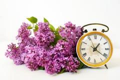 Flor lilás macia, relógio velho no fundo branco Fotografia de Stock Royalty Free