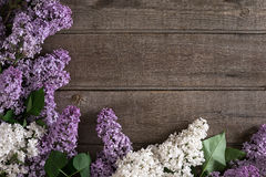 Flor lilás no fundo de madeira rústico com espaço vazio para a mensagem de cumprimento Vista superior Fotos de Stock