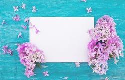 Flor lilás no fundo de madeira rústico de turquesa com c vazio Imagens de Stock Royalty Free