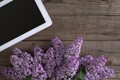 Flor lilás no fundo de madeira rústico, tabuleta com espaço vazio para a mensagem de cumprimento Vista superior Fotos de Stock