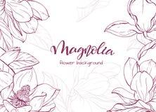 Flor linear de la magnolia del bosquejo Foto de archivo libre de regalías