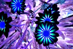 Flor llevada Foto de archivo