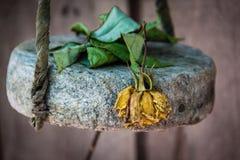 Flor muerta Imagenes de archivo