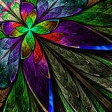 Flor multicolorido do fractal no fundo preto. Fotografia de Stock
