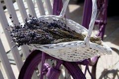 Flor na cesta da bicicleta Imagem de Stock Royalty Free