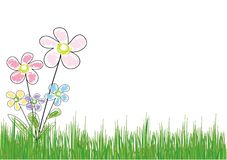 Flor na grama Imagens de Stock Royalty Free