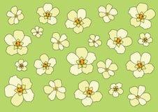 Flor na ilustra??o verde do fundo ilustração do vetor