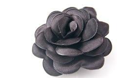 Flor negra Imagen de archivo