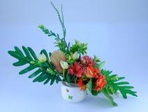 Flor no copo Fotografia de Stock