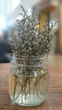 Flor no frasco de vidro Fotografia de Stock