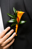 Flor no noivo Imagens de Stock Royalty Free