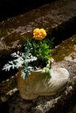 Flor no potenciômetro dado forma carregador Imagens de Stock