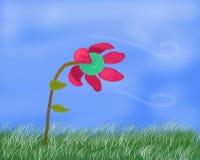 Flor no tempo ventoso Imagens de Stock Royalty Free