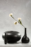 Flor no vaso preto Imagens de Stock