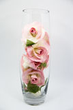 Flor no vidro Foto de Stock