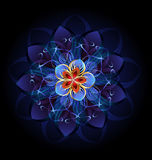 Flor oscura abstracta Imagen de archivo libre de regalías