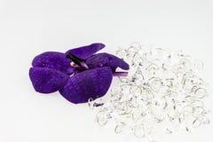 Flor púrpura de la orquídea con el cristal aislado en blanco Imagenes de archivo