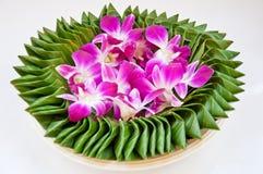 Flor púrpura de la orquídea en la hoja del plátano imágenes de archivo libres de regalías