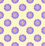 Flor púrpura del aster en el fondo beige de marfil Ilustración del vector Fotografía de archivo