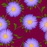 Flor púrpura del aster en Violet Red Background Ilustración del vector Fotografía de archivo