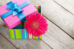 Flor púrpura del gerbera en caja de regalo Foto de archivo libre de regalías
