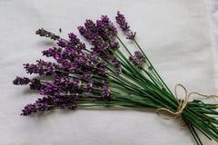 Flor púrpura en un mantel blanco Imagenes de archivo