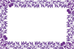 Flor púrpura - frontera Imagen de archivo libre de regalías