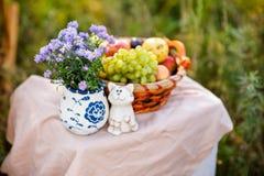 Flor púrpura, una cesta de fruta y gato Foto de archivo