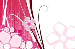 Flor para el color de rosa del fondo Foto de archivo