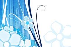 Flor para el fondo azul Fotos de archivo libres de regalías