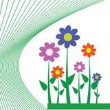 Flor para o fundo Imagens de Stock Royalty Free