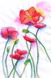 Flor pequena da aguarela Ilustração Royalty Free