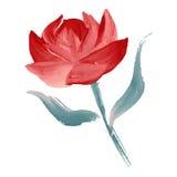 Flor pintada óleo ilustração royalty free